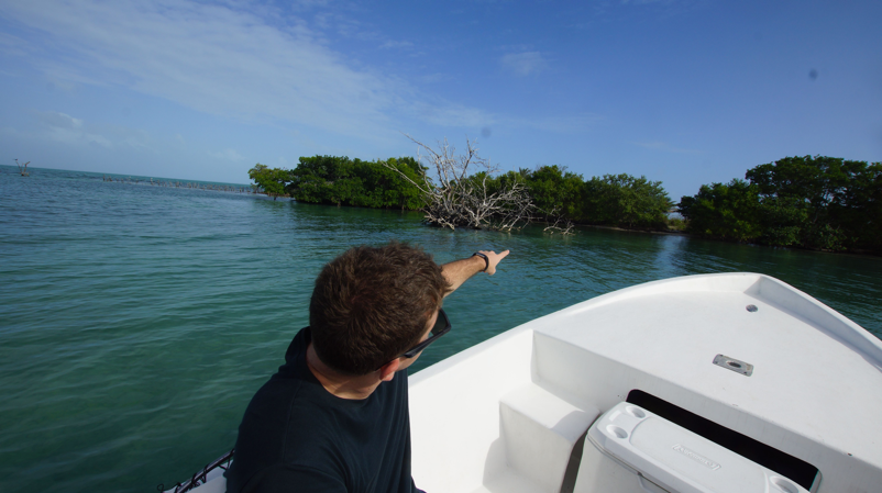 Coffee Caye - Lets Buy An Island